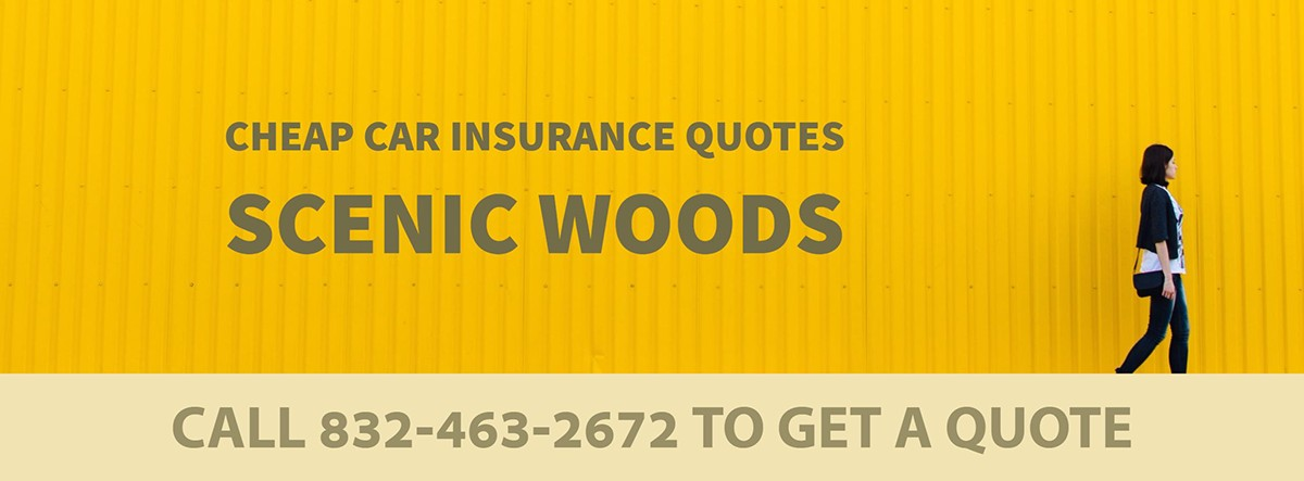 CHEAP CAR INSURANCE QUOTES SCENIC WOODS TX